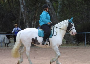 IMG_6921 (1)SoniaLadygreendressage