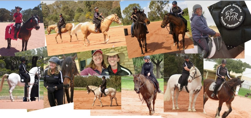 Southern districts 2020 collage